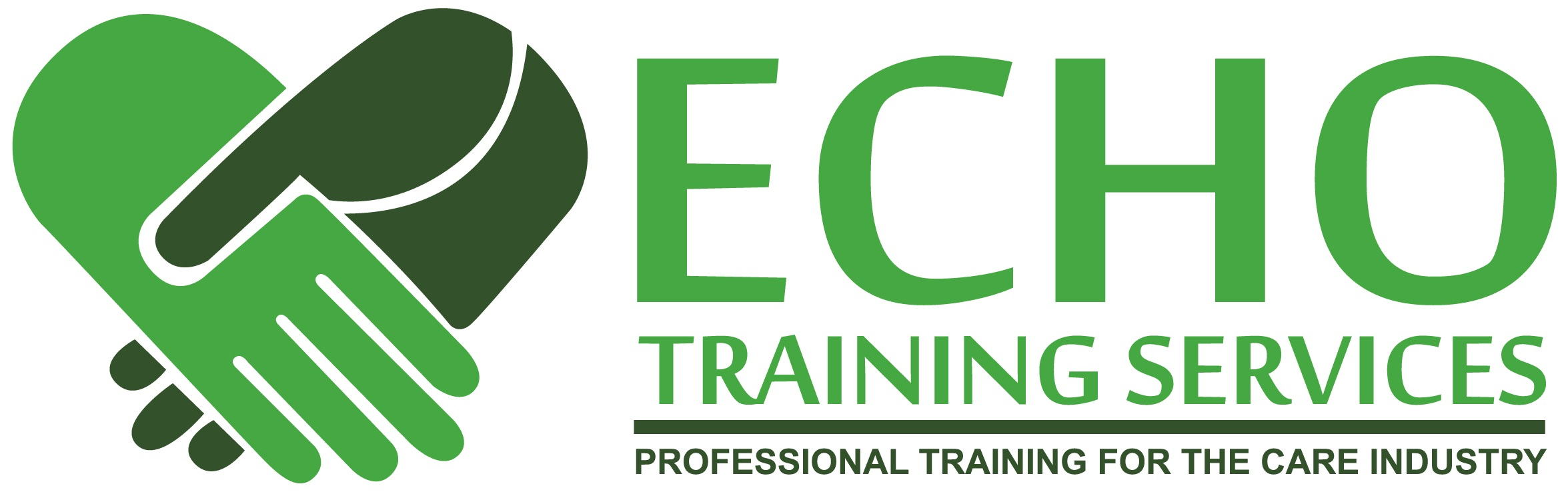 Echo Training Services (logo): Professional Training for the Care Industry